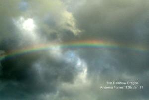 Andrena-Forrest-Rainbow-Dragon